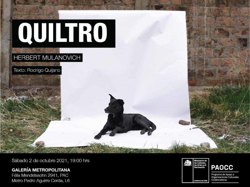 QUILTRO / HERBERT MULANOVICH